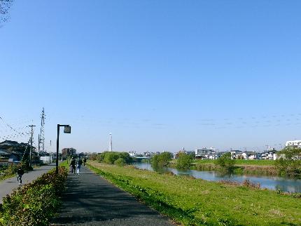 越谷 散歩道4.JPG
