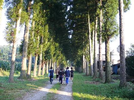 合宿散歩.JPG
