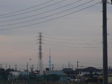 スカイツリー中川.JPG