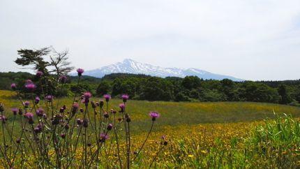 鳥海山.jpg